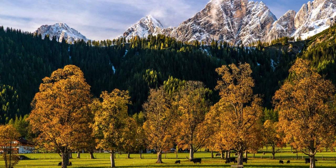 Hotel Matschner-Ramsau am Dachstein Autumn magic