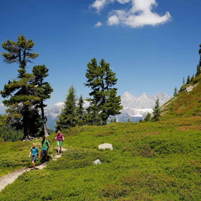 Wanderregion Schladming mit den schönsten Panoramablicken