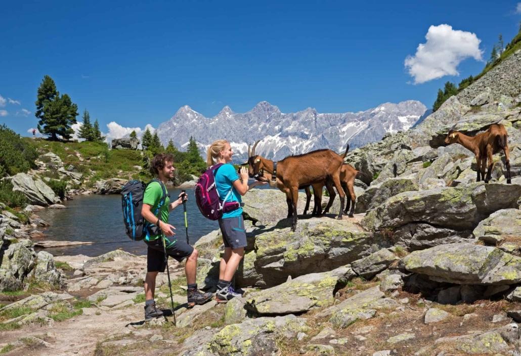 Wandertour zum Spiegelsee mit Panoramablick auf das Dachstein Massiv