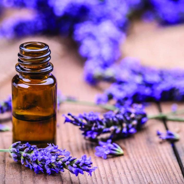 beruhigender Lavendelduft für die Sinne