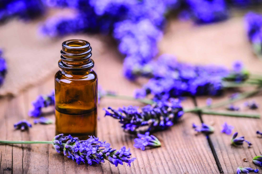 Lavender oil for the senses